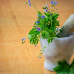 Why Chinese herbal remedies? – clarus medical